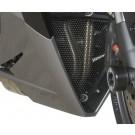 R&G Downpipe Grille for Triumph Daytona 675 ('13-)